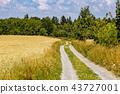 deep, field, forest 43727001