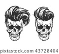 skull with hair beard and mustache 43728404