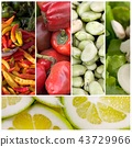 Healthy food photo 43729966