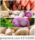Healthy food photo 43729985