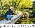 woman shooting photos in japanese garden 43732578