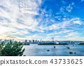 Odaiba海灘公園晚上視圖 43733625