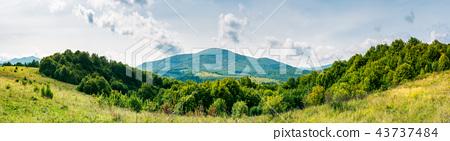 autumnal panorama of mountainous countryside 43737484