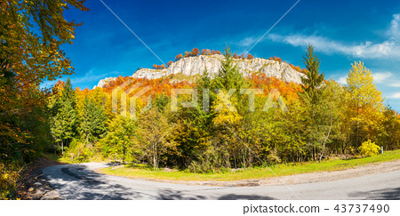 panorama of gorgeous serpentine in autumn forest 43737490
