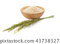 white rice (Thai Jasmine rice) in wooden bowl  43738327