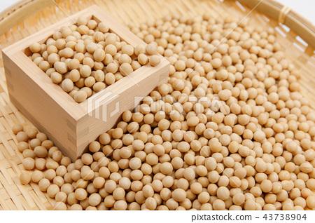 豆類,大豆,干豆,穀物 43738904