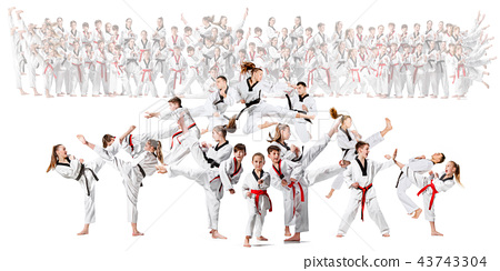 The collage about group of kids training karate martial arts 43743304