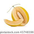 cantaloupe melon on white background 43748396