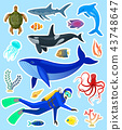 stickers with ocean animals 43748647