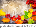 Natural fall leaves 43749117