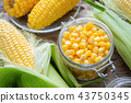 Canned sweet corn, fresh and cooked corn on cobs T 43750345