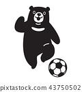 bear vector soccer ball polar bear football logo 43750502