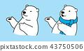 곰, 극지, 북극 43750506