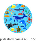 Ocean animals on blue background. 43750772
