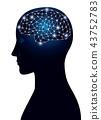 大腦和網絡圖像 43752783