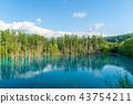 푸른 연못 비 에이 여름 43754211