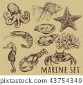 Marine animals collection illustration, 43754349