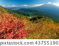 단풍의 御坂山地 · 王岳에서 후지산과 서호 43755190
