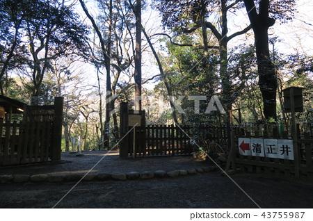 Meiji Shrine Imperial Garden 43755987