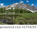 Val Ferret in spring landscape 43758295