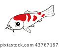 fish, fishes, colored 43767197