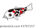 fish, fishes, colored 43767257