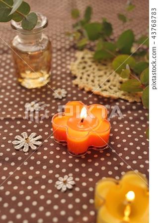 Eucalyptus and aroma candles 43768783