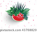 Pink Plumaria flower with sliced watermelon  43768820