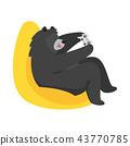 动物 熊 主管 43770785