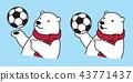 Bear vector soccer ball football polar Bear scarf 43771437