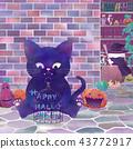 ฮาโลวีน,แมวดำ,แม่มด 43772917