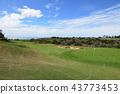 미국 로스 앤젤레스 펠리칸 힐 골프 리조트 43773453