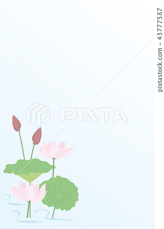 Thank-you note lotus flower 43777587