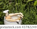 bath, baths, bathe 43782249