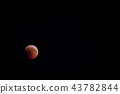 Blood moon during lunar eclipse, blood moon 43782844