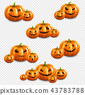 Pumpkin Set Isolated Transparent Background 43783788