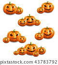 Pumpkin Set Isolated White Background 43783792