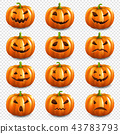 Pumpkin Set Isolated Transparent Background 43783793