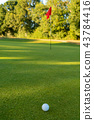 Golf Ball and Flag on the Green of a Golf Course 43784416