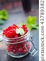 red currant 43789382
