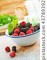 berries 43789392