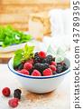 berries 43789395