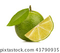 lemon with green leafs on white background 43790935