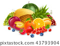 fruit vector isolated 43793904