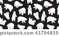 곰, 북극곰, 흰 43794839