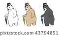 bear, polar, umbrella 43794851