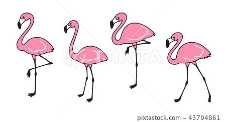 flamingo vector set Cute flamingos collection bird 43794861