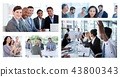 Business,People,Businessteam 43800343