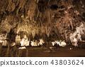칼즈 배드 동굴 국립 공원 43803624