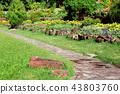 Footpath in the garden. 43803760
